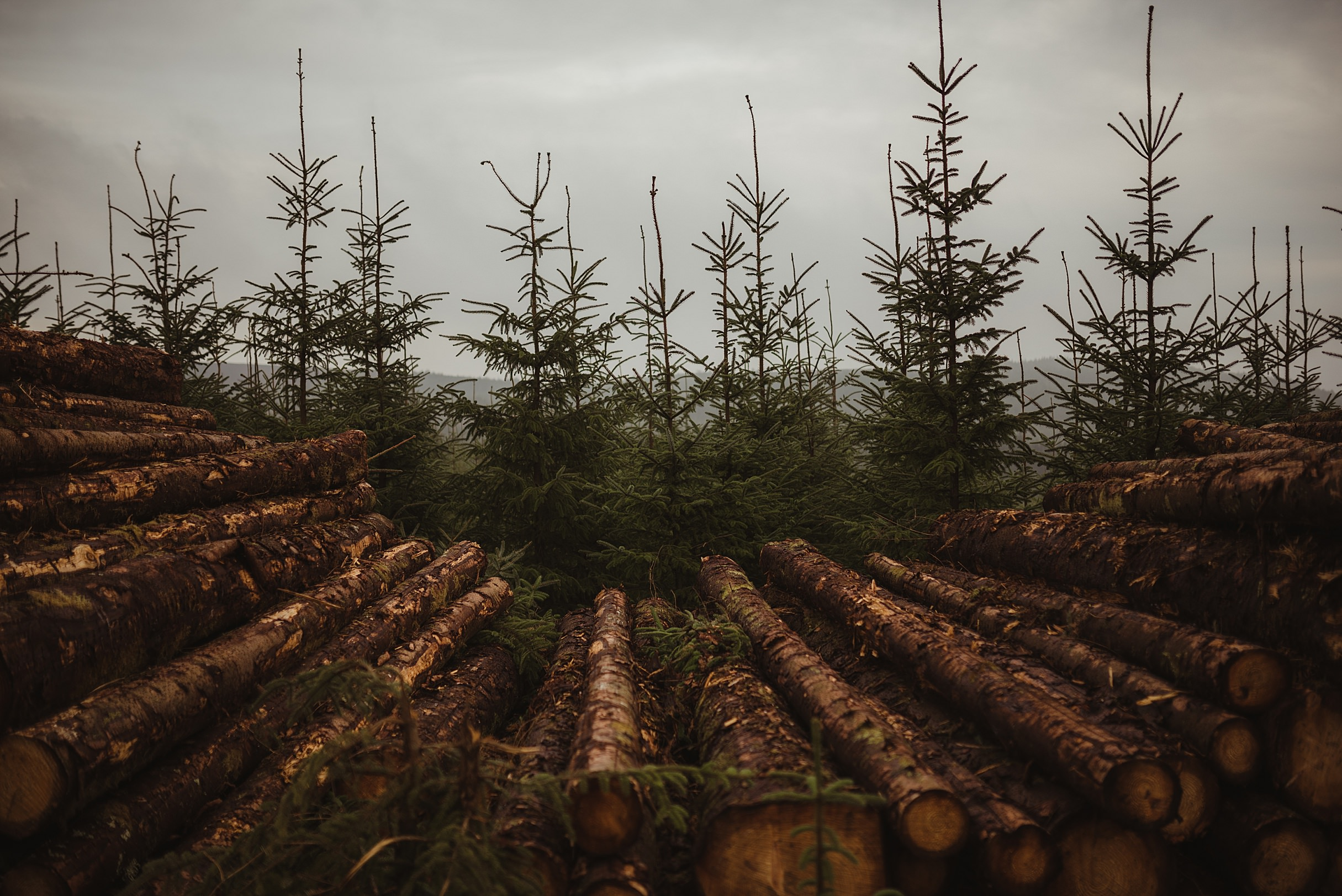 Wicklow-Mountains-Engagement-Dublin-Photographer-Session-68.jpg